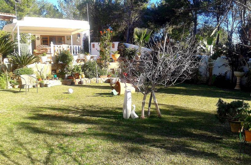 Cala llenya Ibiza villa with guest house & walk to beach