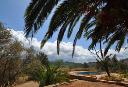 traditional finca with renovation potential.jpg_14
