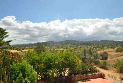 traditional finca with renovation potential.jpg_2