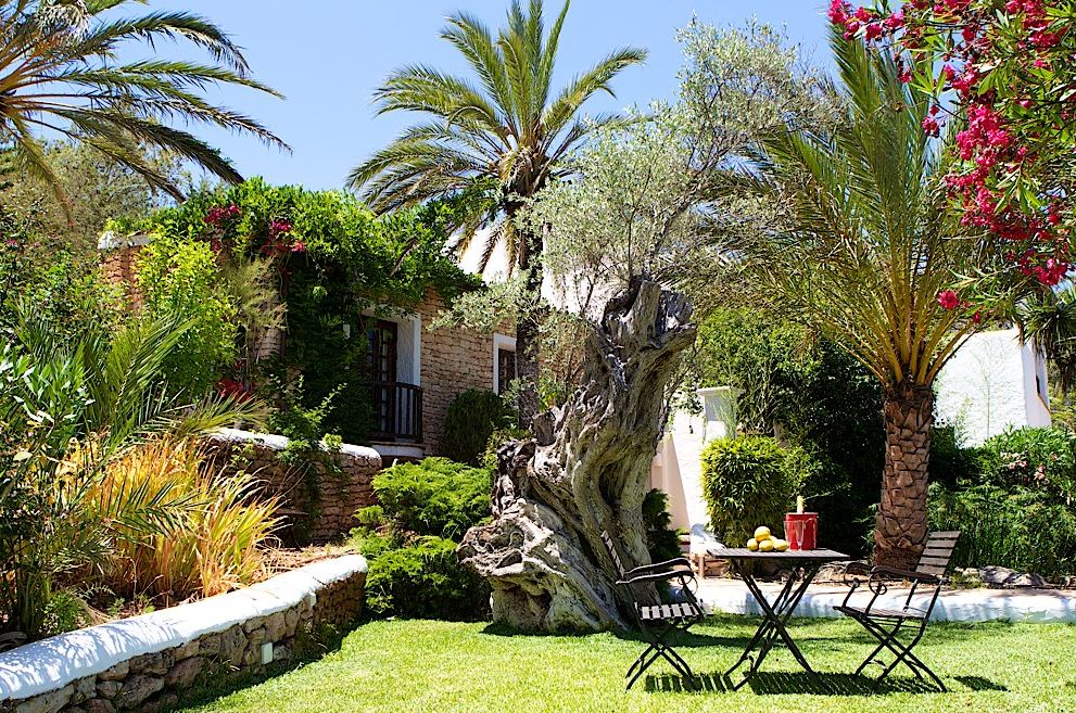 Finca available for rent in the hills of santa eularia for Ibiza country villas