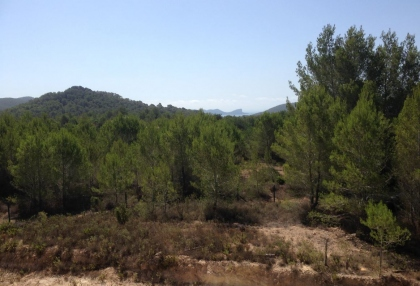 Es Cubells Ibiza luxury unfinished villa for sale in over 6 acres of land with distant sea views 11