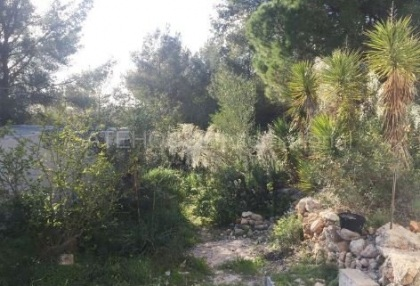 Authentic finca for sale within walking distance of Santa Eularia_5.