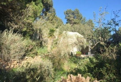 Authentic finca for sale within walking distance of Santa Eularia_6.
