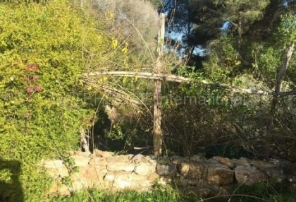 Authentic finca for sale within walking distance of Santa Eularia_9.