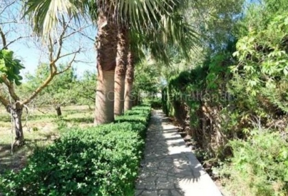 Country house for sale in Santa Agnes_3