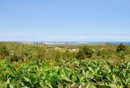 Traditional sea view villa for sale in San Agustin_8