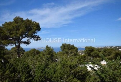 Apartment with second apartment and pool in Cala Vadella_10