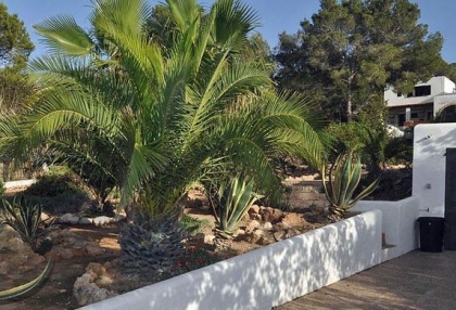 Finca style home for sale in San Jose, Ibiza_13