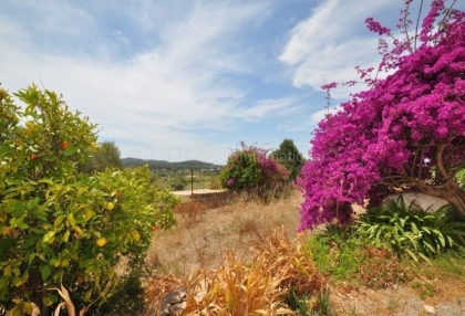 Three hundred year old finca for sale in Santa Eularia with separate plot_5