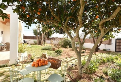Eco friendly country house for sale in Santa Eularia_1