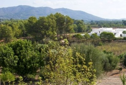 Two hundred year old finca project for sale in Santa Eulalia, Ibiza_12