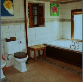 Finca for sale with separate bungalow close to San Jose Village_7