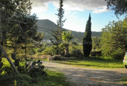 Countryside finca for sale in San Jose_9