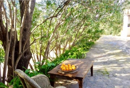 Rustic finca with panoramic views for sale close to San Juan_7