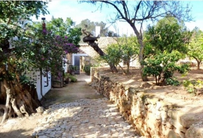 Rustic finca with panoramic views for sale close to San Juan_8