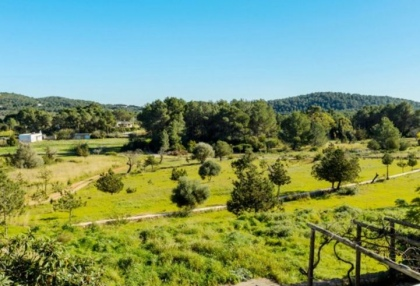 Six bedroom finca on a large plot for sale in Sa Font, Ibiza_12