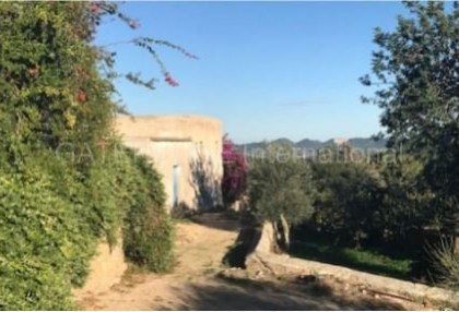 Renovation project for sale in the centre of Ibiza_1