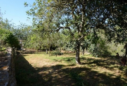 country house with potential for renovation in Santa Eularia_12