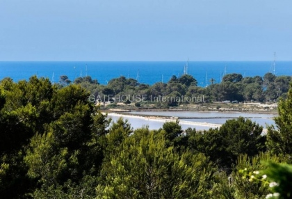 Luxury detached home for sale in Las Salinas_3