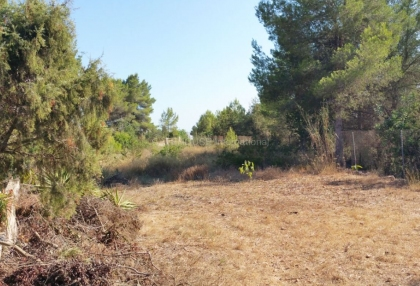 Rustic house for sale close to Jesus and Ibiza town_7