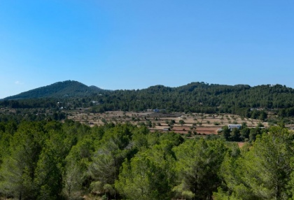 Country estate for sale in Santa Eularia_18