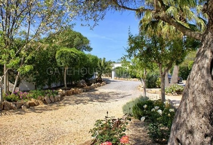 Luxury villa close to Cala Bassa with business potential_2