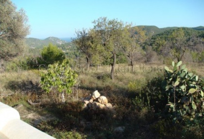 Old Ibicenco finca for sale with land in North Ibiza 15