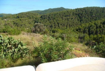 Old Ibicenco finca for sale with land in North Ibiza 17