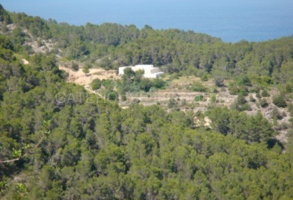Old Ibicenco finca for sale with land in North Ibiza 5