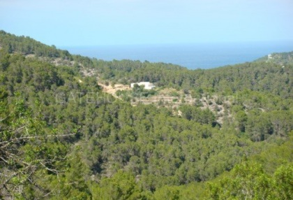 Old Ibicenco finca for sale with land in North Ibiza 6