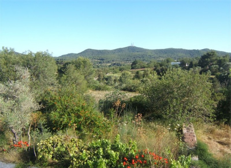 Large 120,000 square metre plot with ruin for sale between Santa Gertrudis & San Lorenzo, Ibiza