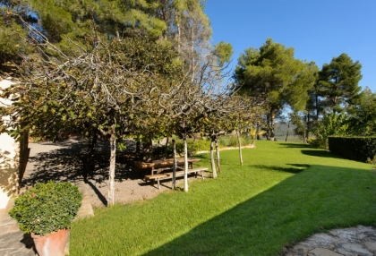 Large traditional Ibiza finca with guesthouse pool vineyard 10