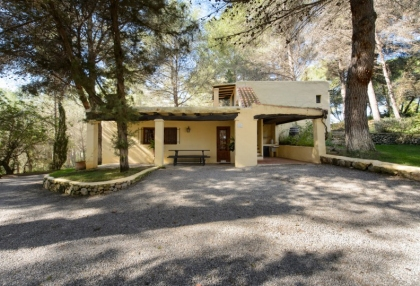 Large traditional Ibiza finca with guesthouse pool vineyard 28