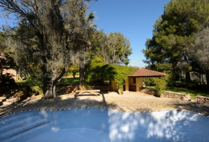 Large traditional Ibiza finca with guesthouse pool vineyard 3