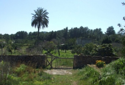 mansion-for-sale-san-lorenzo-ibiza-in-need-of-renovation-on-large-plot-1