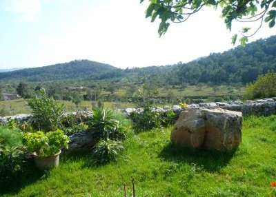 old-finca-with-guest-houses-for-sale-ibiza-view_pi221