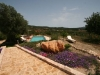 old-finca-with-guest-houses-for-sale-ibiza-poll-view_pi221