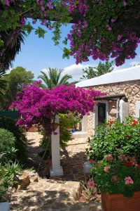 Finca for sale between Val Verde and Calla Llonga, Ibiza