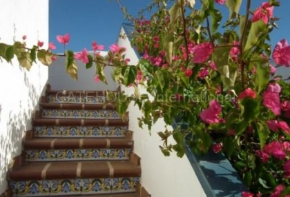 2 bedroom Ibiza apartment in a small complex near San Antonio stairs to private roof terrace