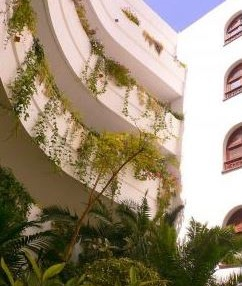 Santa Eularia apartment with direct beach access and views of the sea 6