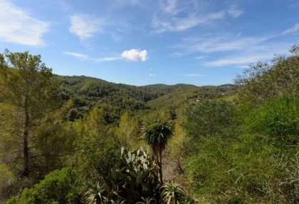 Ibiza country finca for sale with land near San Miguel 22