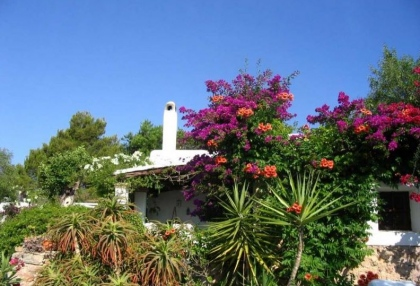 Ibiza country finca for sale with land near San Miguel 3
