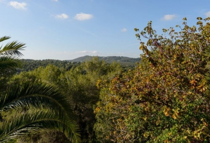 Beautiful finca for sale Cala Llonga Valverde Santa Eularia Ibiza 20