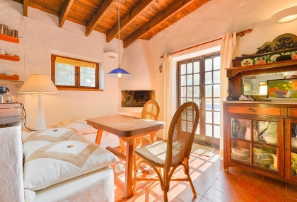 lovely traditional finca in santa eularia_13