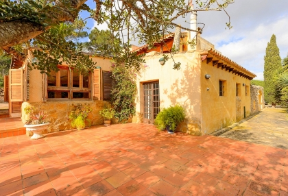 lovely traditional finca in santa eularia_24