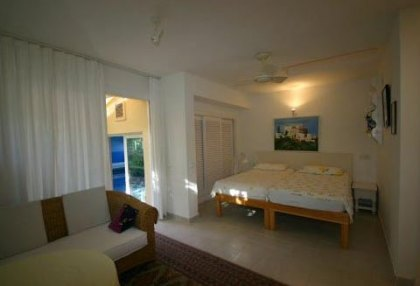 Santa Eularia luxury villa with guest accommodation in private setting close to town 15