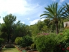 villa-jardin-available-for-rent-close-to-ibiza-town_6