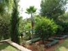 villa-jardin-available-for-rent-close-to-ibiza-town_7