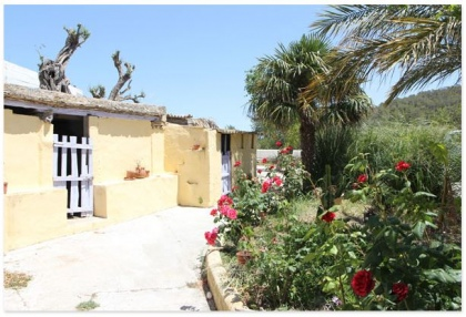 Finca for sale Ibiza with large plot of land and pool 2
