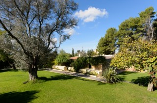 Large traditional Ibiza finca vineyard guesthouse & country plot